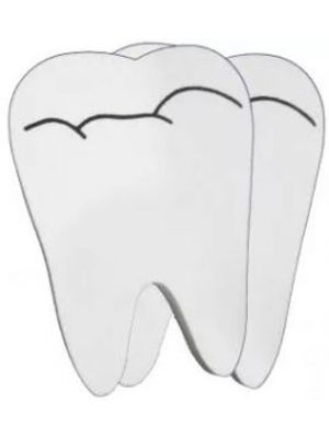 Navadha Large Tooth Erasers (NA544)