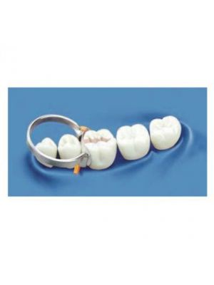 Buy Filay Dent Contoured Metal Matrices Molars Online At